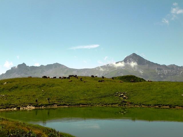 Lac de l'Arpettaz et troupeau, Nièlard et Cheval noir