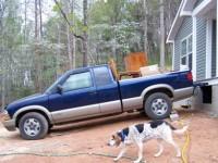 Dolly, dog, supervising