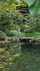 Nitobe Memorial Garden by Laríssa