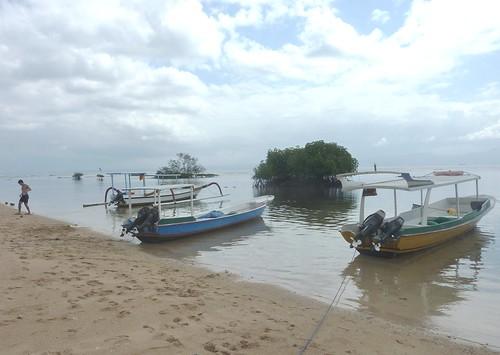 Bali-Lembongan-Mangrove (2)