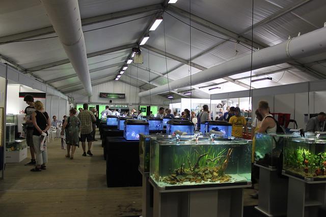 Tent van Holland Aquarium Show 2012
