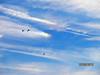 Aerosol Geoengineering
