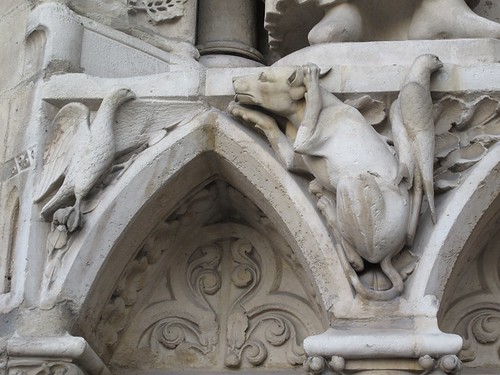 Notre Dame creature w bird