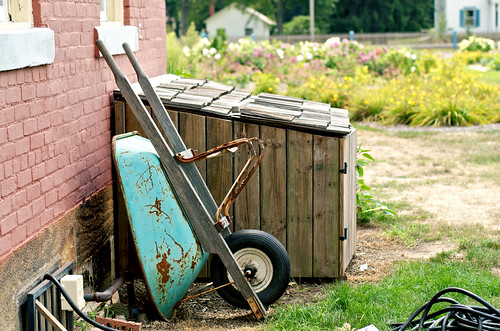 Rusty wheelbarrow.