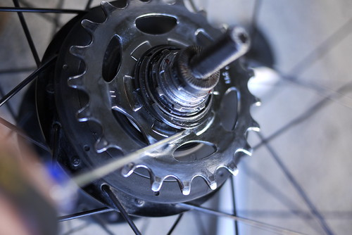 Cog snap-ring removal on a Shimano Alfine 8 Speed Internal Gear Hub (IGH)