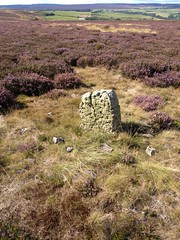 Brow Moor Monument
