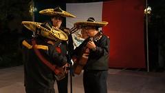 Fiesta Nacional, Embajada de México en la Federación de Rusia
