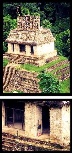 Salamba sirsasana in Tikal