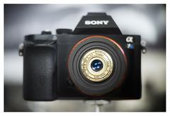 Meyer Trioplan 30/3.5 (fixed lens Welta Penti 0)