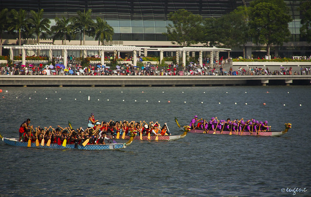 Team Dragonboat