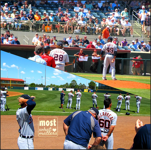 Tigers' Spring Training