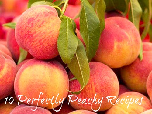 10 Perfectly Peachy Recipes