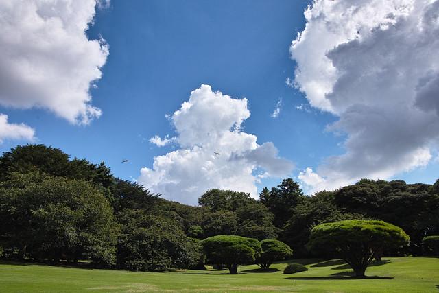 Summer sky in Shinjuku Gyoen
