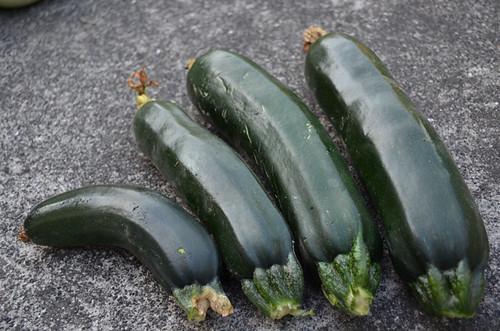 土呂部野菜