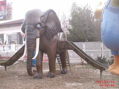 Fil Oyun Grubu (en:420 boy:490 yük:270 ağr:200)