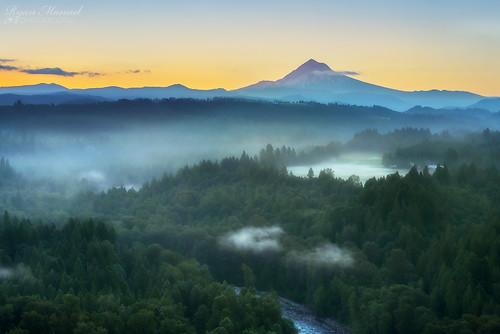 trees fog oregon sunrise nikon cascades mthood sandyriver jonsrud leefilters sandyor balckcard d800e