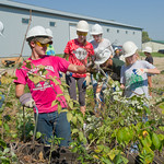 12-034 -- During Mission Day, a group of students cleaned up brush behind the Habitat For Humanity Restore.