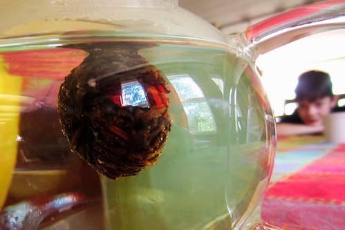 Flower tea 2
