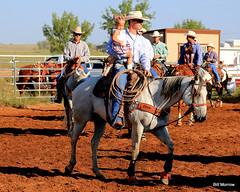 pack animal(0.0), jockey(0.0), barrel racing(0.0), animal sports(1.0), rodeo(1.0), western riding(1.0), equestrian sport(1.0), sports(1.0), western pleasure(1.0), charreada(1.0), reining(1.0), cowboy(1.0),