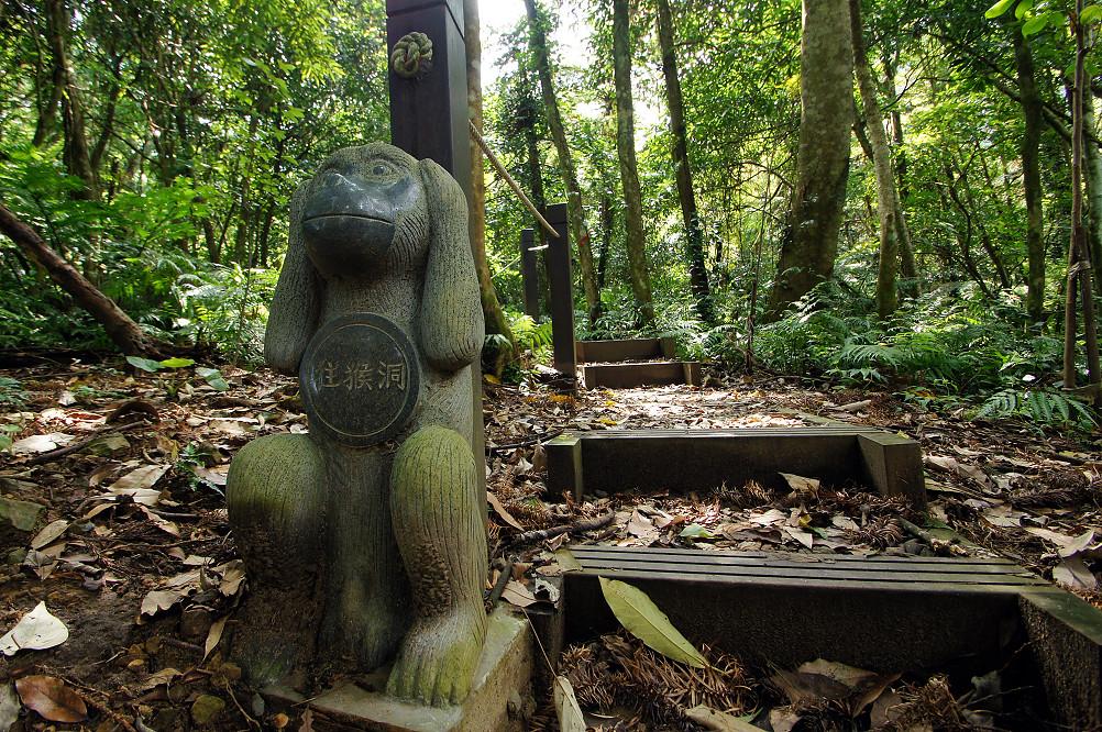 猴洞步道-19