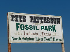 Pete Patterson Fossil Park, Ladonia, Texas