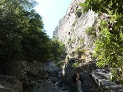 Remontée du haut-Velacu : fin de la partie forestière, vue vers l'amont (Laurent)