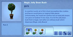 Magic Jelly Bean Bush