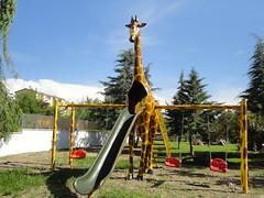 Zürafa Oyun Grubu (en:600 boy:600 yük :480 ağr:200)