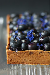 Blueberries tart