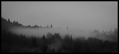 park autumn summer bw fog sunrise us september wa 2012 marymoor lightroom sammamish topazadjust topazdenoise canoneos5dmarkiii ef100mmf28macrolisusm