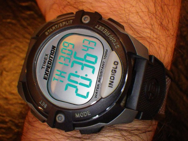 Timex Expedition T40941 Wrist Watch