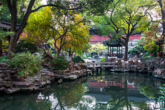 Breathe in the fresh air at the exquisite Yuyuan Garden - Things to do in Shanghai