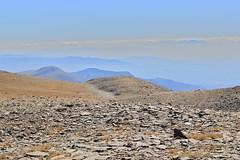 toward pre-pyrenees