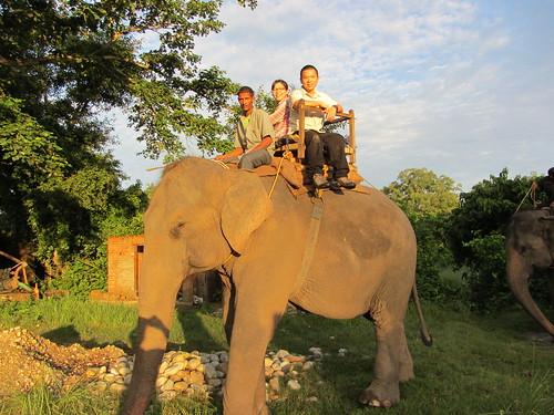 08.Sep.12 Morning elephant ride