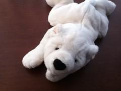 SnugglyvPolar Bear