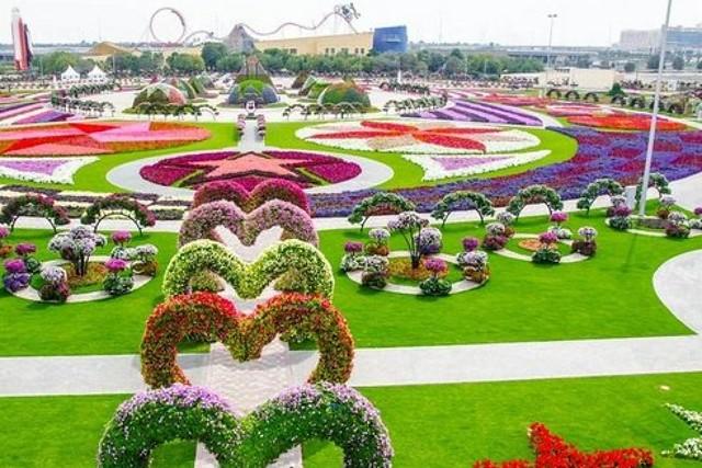 o-dubai-miracle-garden-facebook_29183983070_o