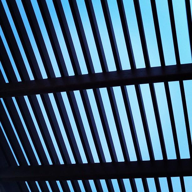 Pattern In Blue