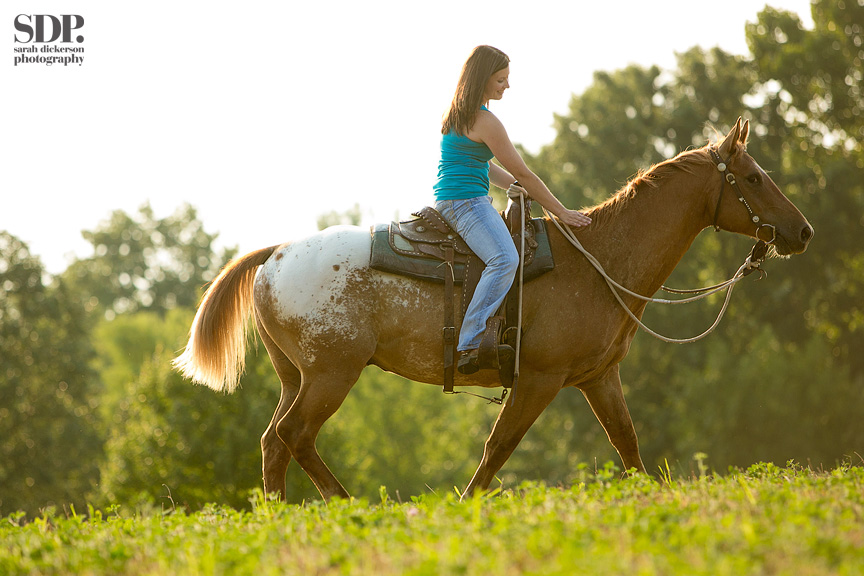 Kansas City equine photography