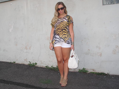 Livingaftermidnite : Golden Zebra