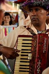 wind instrument(0.0), accordion(1.0), musician(1.0), folk instrument(1.0), music(1.0), garmon(1.0),