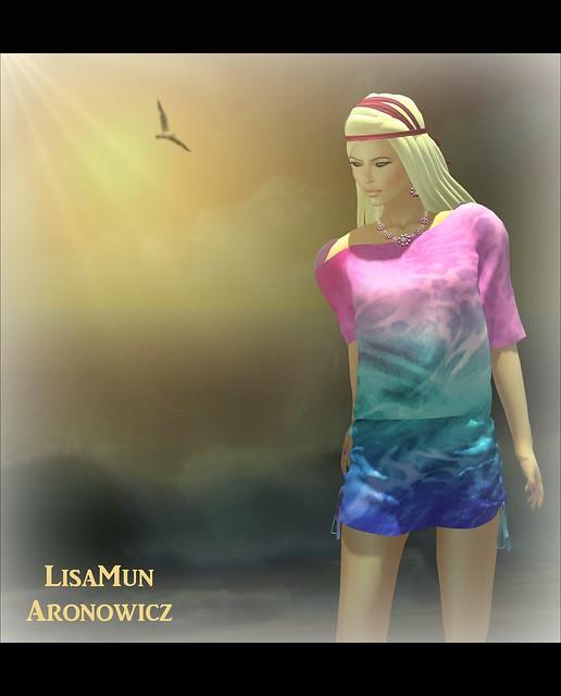 Mesh Beach Dress