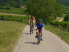 Na kole kolem vinic