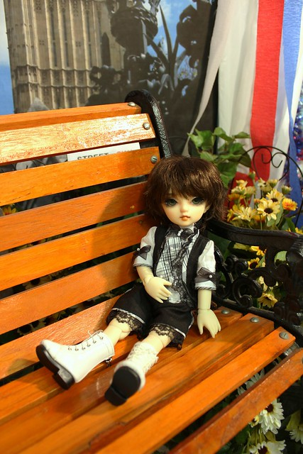 Sora relaxing on a bench