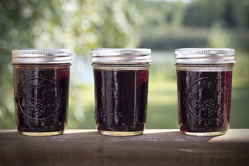 elderberryjelly
