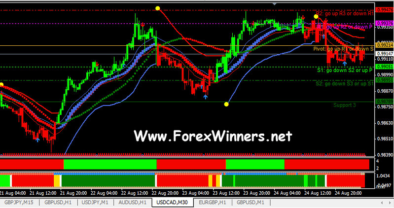 D3 trading system