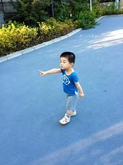 朝散歩 (2012/8/26)