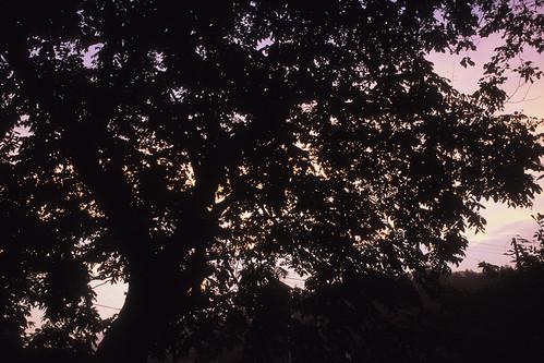 20120823003iriya.jpg