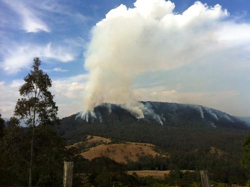 hazard reduction burn, Barrington Tops NP12
