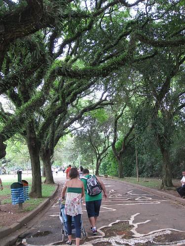 Sao Paulo Parque Ibirapuera