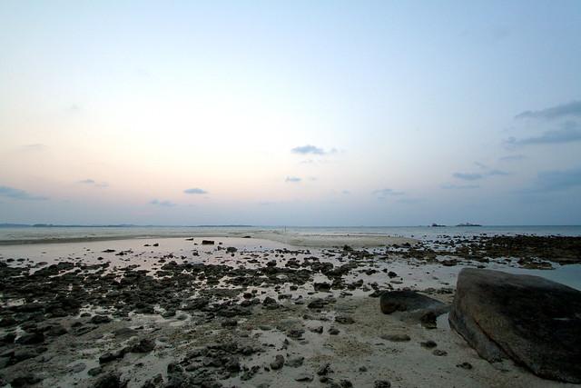 Nikoi Island: Shore